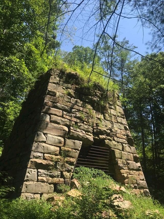 Negdje u šumi u Kentuckyju...