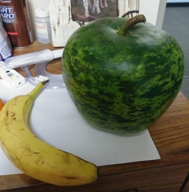 """""""Ova velika bundeva izgleda kao lubenica u obliku jabuke!"""""""