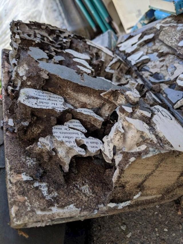 Knjiga koju su pojeli termiti
