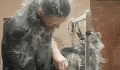 Ova nesvakidašnja snimka će vam pokazati zbog čega nije lako biti frizer za pse
