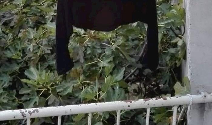 Dalmatinka je smislila kako sušiti odjeću dok vani kiša pada, njeno rješenje je nasmijalo društvene mreže