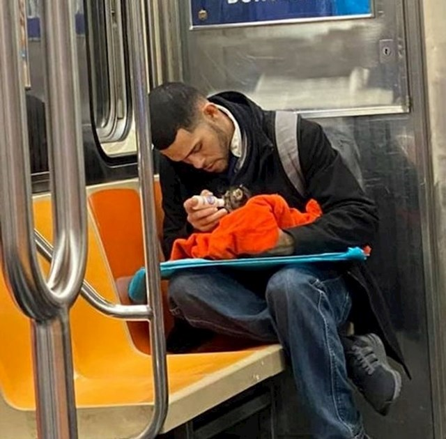 """""""U javnom prijevozu sam vidjela lika koji je malom mačiću davao mlijeko."""""""