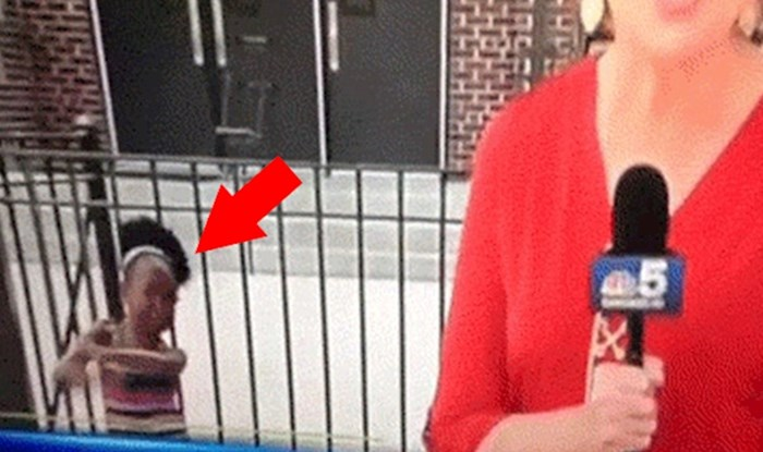 Klinka je utrčala u kadar i na urnebesan način ukrala show TV reporterki
