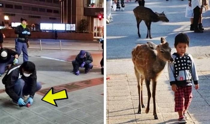 15 zanimljivih stvari koje ćete vidjeti ako ikad posjetite Japan
