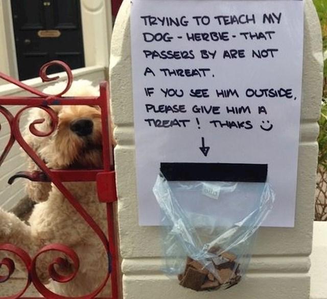 """""""Pokušavamo naučiti psa Herbieja da prolaznici nisu prijetnja. Ako ga vidite vani, dajte mu poslasticu! Hvala :)"""""""