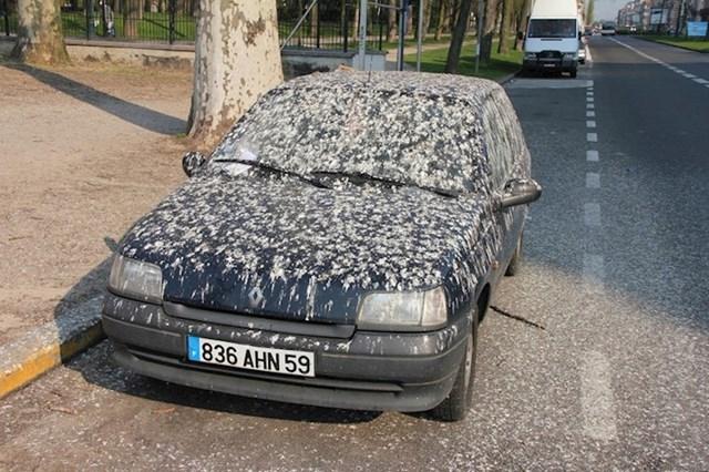 Parkirao je autu na najgorem mogućem mjestu.