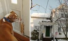 Policija je ženi javila da joj je pas čudno ponaša, u kući su našli čudne tragove i pravi razlog