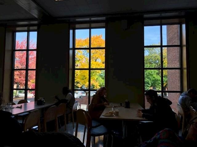 """""""U svakom od ovih prozora je različito godišnje doba. Tako bar izgleda..."""""""