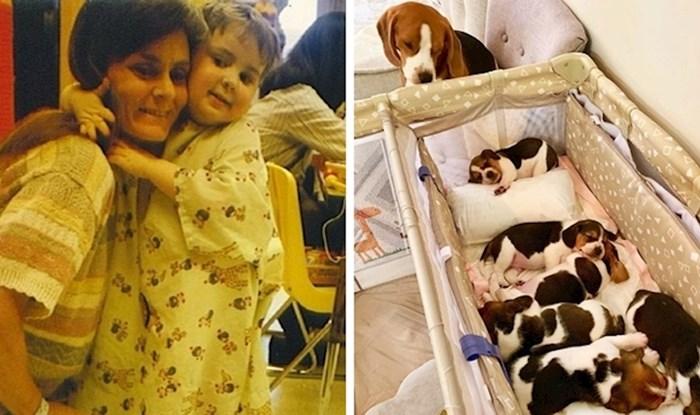 14 slika koje dokazuju da majčinska ljubav izgleda jednako slatko i kod ljudi i kod životinja