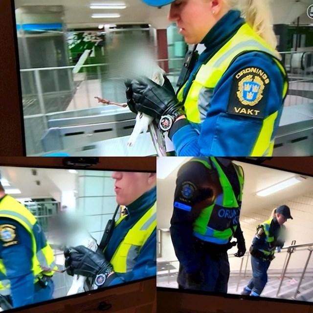Švedska televizija je odlučila zaštititi privatnost galeba spašenog u podzemnoj željeznici.