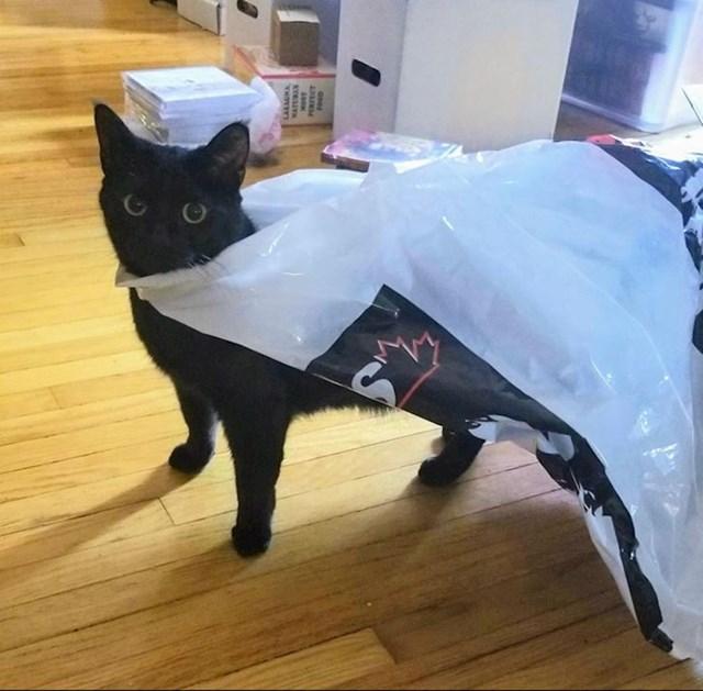 """""""Ušla sam u sobu i vidjela da je moja mačka sebi sama stavila plašt za superheroje."""""""