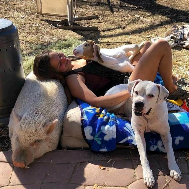 Žena je išla volontirati u skloništu za životinje, brzo je našla nove prijatelje.