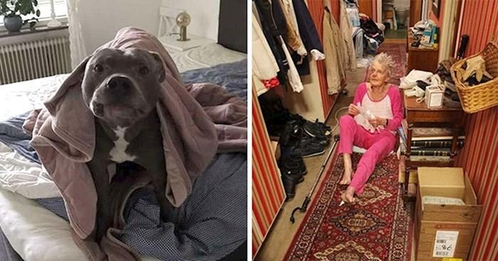 """Starica se bojala """"opasnog"""" susjedovog psa sve dok joj on jednog dana nije spasio život"""