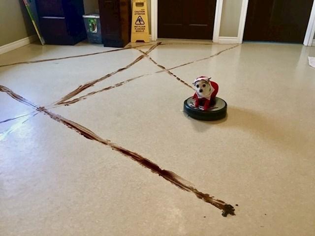 """""""Naš pas se pokakio po podu, a onda je robotski usisavač obavio ostatak..."""""""