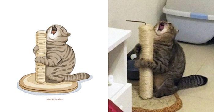 Skupila je najsmješnije slike mačaka s interneta i napravila genijalnu kolekciju umjetničkih ilustracija
