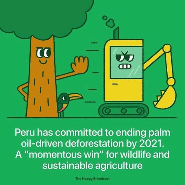 Republika Peru donijela je odluku da do 2021. godine ukine proizvodnju palminog ulja, zbog čije se proizvodnje krče šume. Ta odluka spasit će mnoga životinjska staništa i poljoprivredu.