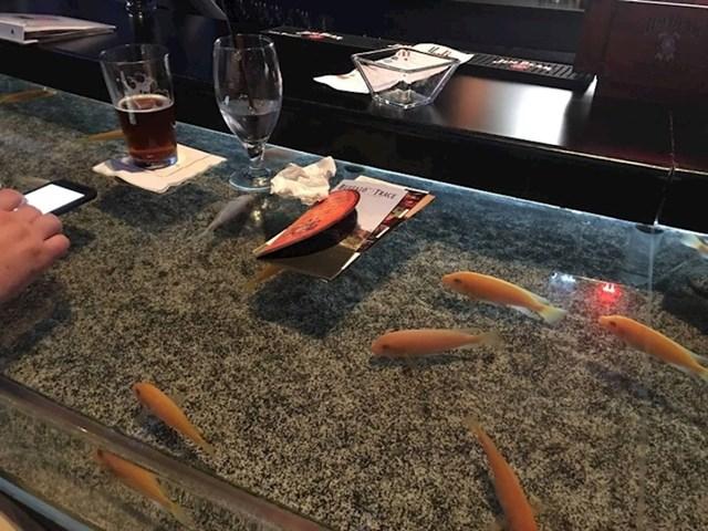 Ovaj bar na šanku ima ugrađen akvarij s ribama.