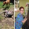 20 slika neobičnih životinja čija veličina izgleda pomalo nestvarno