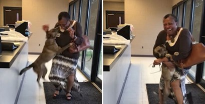 VIDEO Izgubljeni pas poludio od sreće kada je nakon dva tjedna napokon ugledao vlasnicu