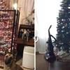 Genijalni načini kako zaštititi svoje božićno drvce od kućnih ljubimaca