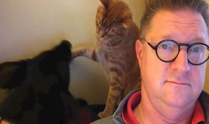 VIDEO Zaigrani pas i mačka ne dopuštaju vlasniku da gleda vijesti na miru