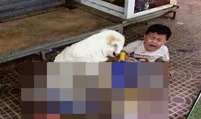 Pas rasplakao dječaka jer mu je oduzeo najdražu igračku, pogledajte o čemu se radi