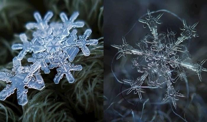 Makro fotografije snježnih pahuljica otkrivaju njihov nevjerojatno savršeni dizajn