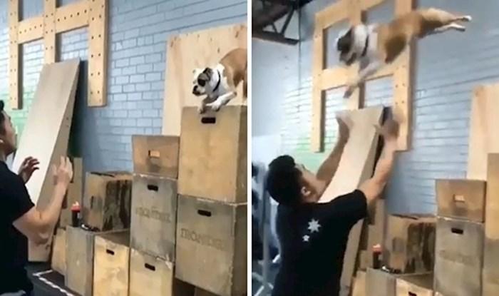 VIDEO Pas je dugo pokušavao skočiti u ruke svom vlasniku, pogledajte kako je to izgledalo kada je napokon uspio