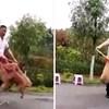 VIDEO Četiri pudlice obožavaju preskakati vijaču u isto vrijeme