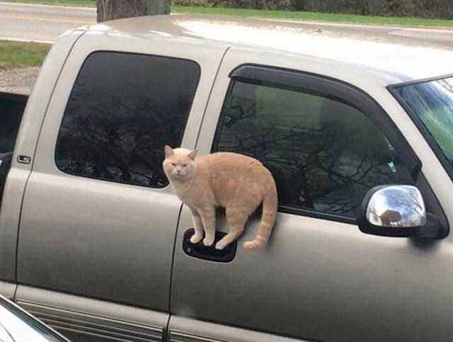 Kad čekaš mamu da ravrši razgovor i otključa auto.