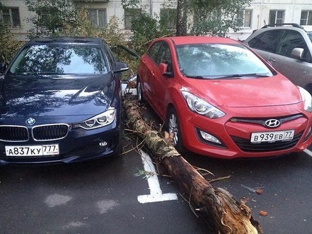 Dva sretnika nisu se mogli bolje parkirati.