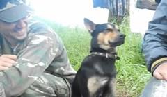VIDEO Pogledajte kako se pas na zadatku bori sa snom