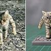 Umjetnik pretvara smiješne fotke životinja u živopisne skulpture