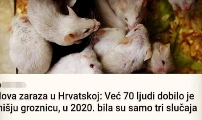 Hrvatskom se širi nova zaraza, a Tomislavova reakcija na tu činjenicu oduševila je internet