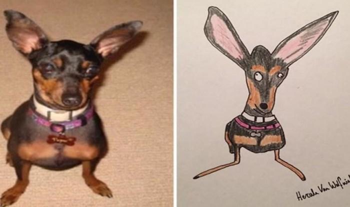 Njegovi simpatični crteži životinja postali su viralni i skupili tisuće funti u humanitarne svrhe