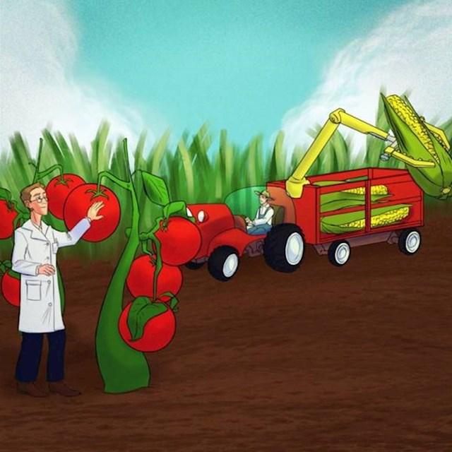 13. Ljudi su mislili da će povrće i voće u budućnosti biti gigantsko