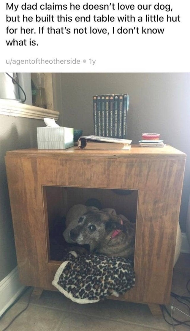 """3. """"Moj tata tvrdi da ne voli našeg psa, a napravio joj je ovu kućicu unutar komode. Ako to nije ljubav, ne znam što je."""""""