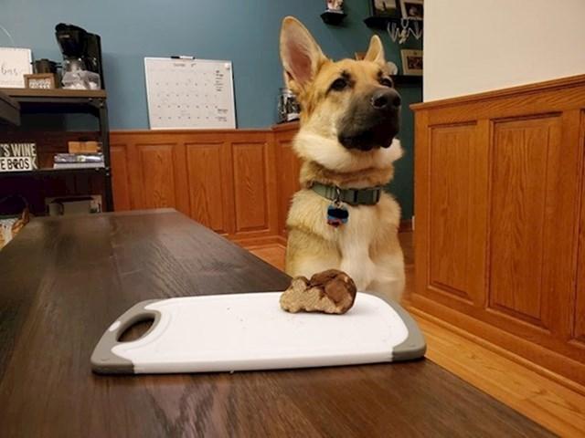 """16. """"Moj pas pronašao je tartuf i sad je jako ponosan!"""""""