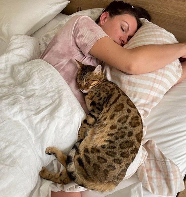 """4. """"Moja žena danas treba roditi. Čini se da mačka to zna..."""""""