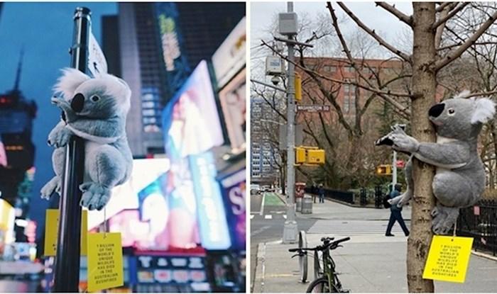 Plišane koale diljem New Yorka podižu svijest o australskim požarima