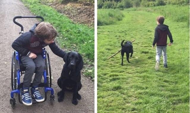 """8. """"Moj sin je prije 8 mjeseci bio potpuno ovisan o kolicima. Nabavili smo mu terapijskog psa. Ovo su rezultati!""""🥰"""