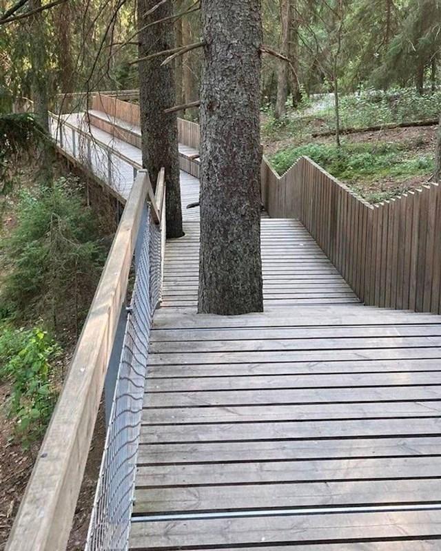 12. Nisu htjeli rezati drveća, pa se put i pješaci prilagođavaju njima.