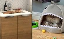 20 genijalnih tweetova o mačkama koje su zapele u karanteni sa svojim vlasnicima