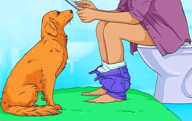 7. Zašto neki psi vlasnike slijede u WC?
