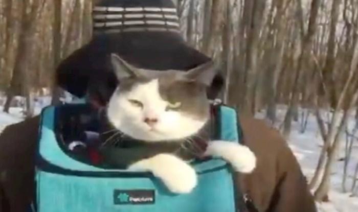 VIDEO Maca koja obožava avanture, s vlasnicom odlazi planinariti i voziti se u kajaku