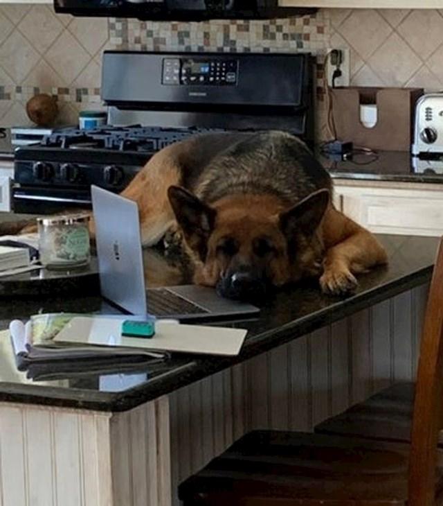 """5. """"Dosta si radila za danas!"""""""