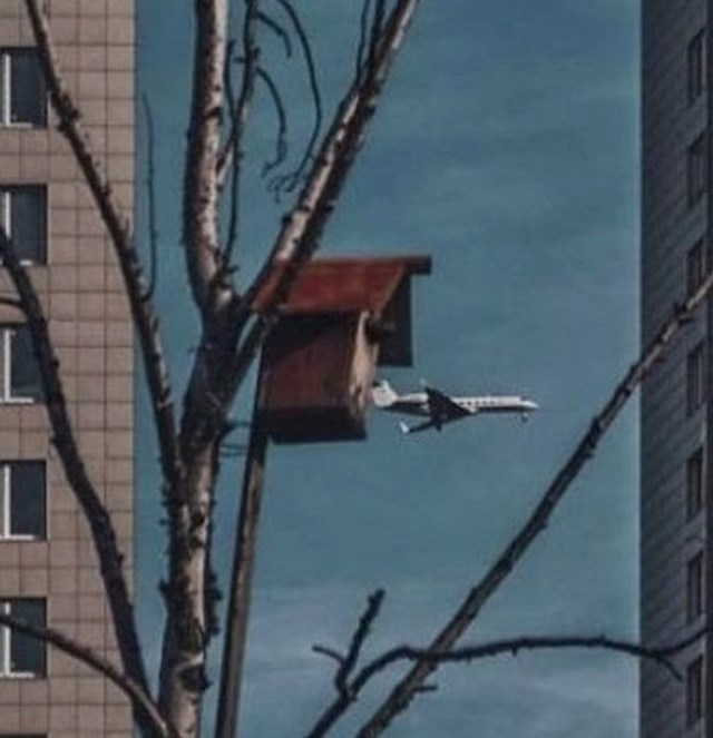 12. Kućica za ptice ili za avione?