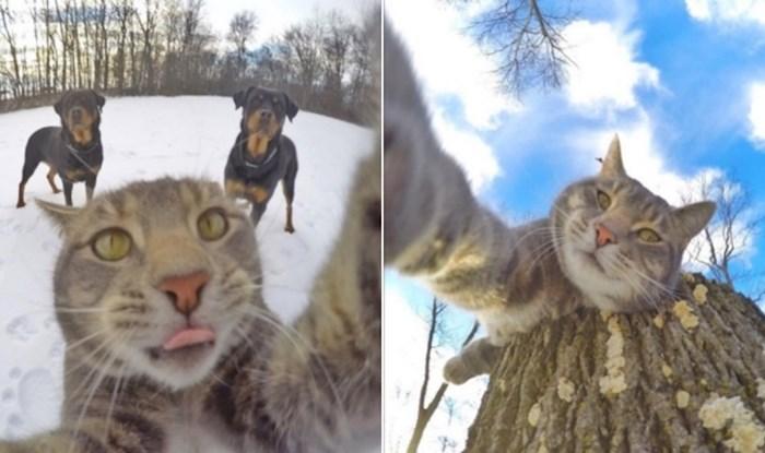 Upoznajte Mannyja, jedinog mačka na svijetu koji obožava snimati selfieje