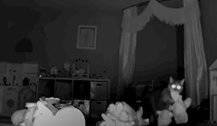 """VIDEO Skrivena kamera otkrila je razlog iz kojeg ova mačka """"krade"""" igračke"""