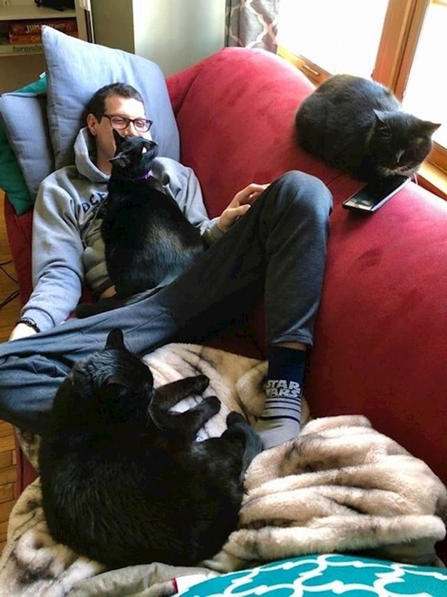 """""""Kaže: to su tvoje mačke, nemam ja veze s njima."""""""